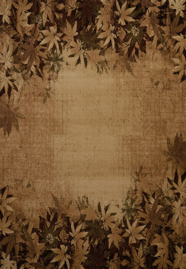United Weavers Contours Carleo Entertainment Management Collection Autumn Trace Rectangular Rug