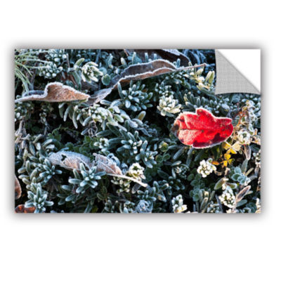 Brushstone Frosty Scene Removable Wall Decal
