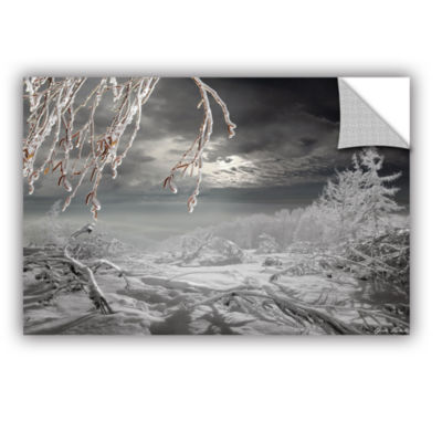 Brushstone Frozen Landscape Removable Wall Decal