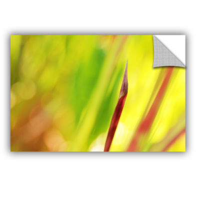 Brushstone Japanese Blood Grass Red Edge RemovableWall Decal
