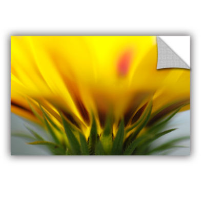 Brushstone Mexican Daisy Removable Wall Decal
