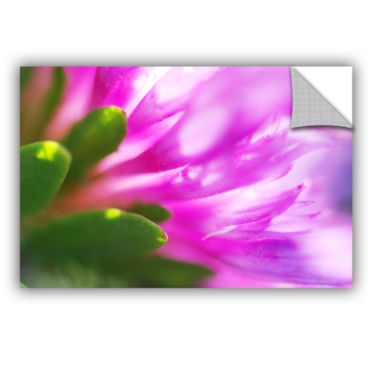 Brushstone Phlox On Edge Removable Wall Decal