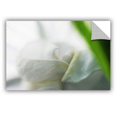 Brushstone White Petal Removable Wall Decal