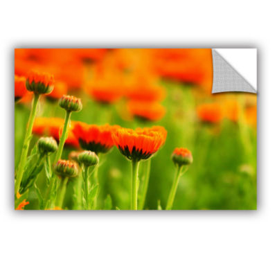 Brushstone Marigolds Removable Wall Decal