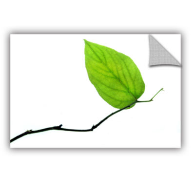 Brushstone Lone Leaf Removable Wall Decal