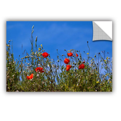 Brushstone Poppies On Bluesky Removable Wall Decal
