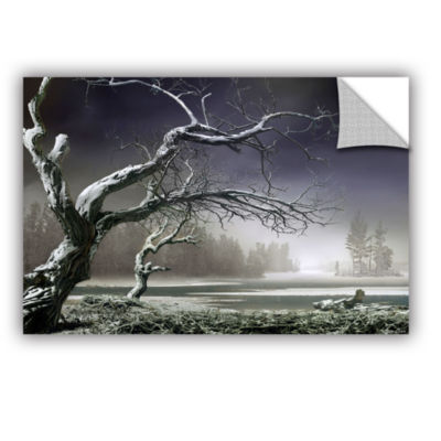 Brushstone Winter Thaw Removable Wall Decal