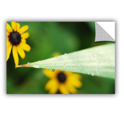 Brushstone Black-eyed Susan Reflection Removable Wall Decal
