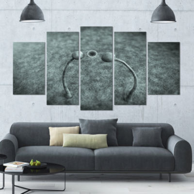 Fungus On Leather Surface Landscape Large Canvas Art Print - 5 Panels