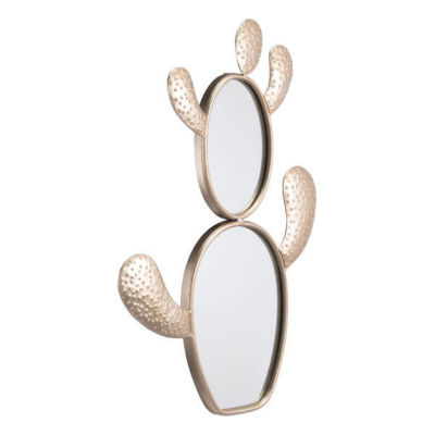 Cactus Mirror