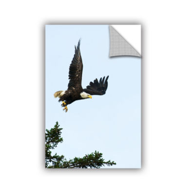 Brushstone Bald Eagle Lift Off Removable Wall Decal