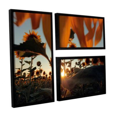 Brushstone Sunflower Field 3-pc. Flag Floater Framed Canvas Wall Art