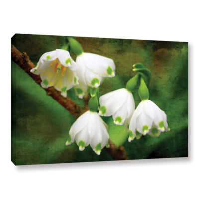 Brushstone Spring Reunion Gallery Wrapped Canvas Wall Art