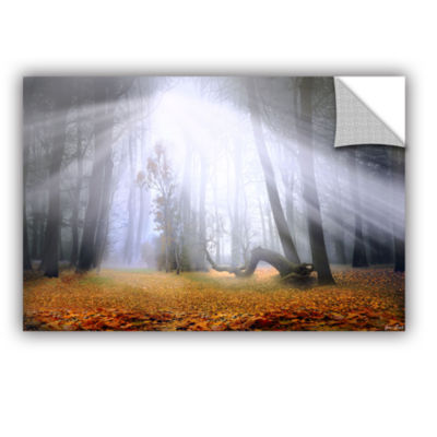 Brushstone Autumn Morning Removable Wall Decal