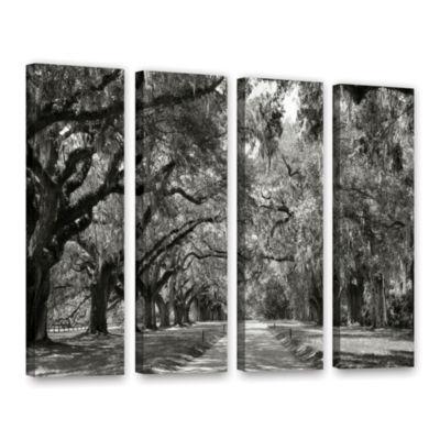 Brushstone Live Oak Avenue 4-pc. Gallery Wrapped Canvas Wall Art