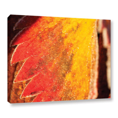 Brushstone Frosty Leaf Gallery Wrapped Canvas