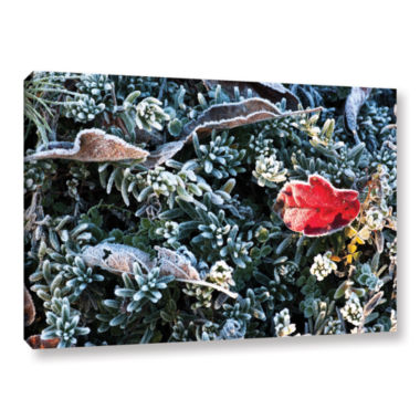 Brushstone Frosty Scene Gallery Wrapped Canvas