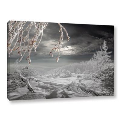 Brushstone Frozen Landscape Gallery Wrapped Canvas