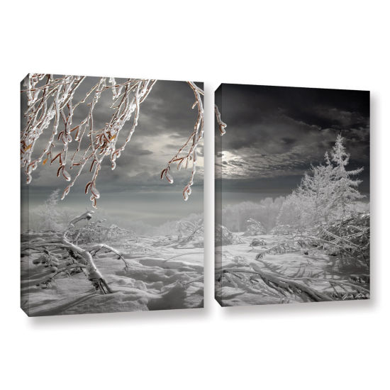 Brushstone Frozen Landscape 2-pc. Gallery WrappedCanvas Set
