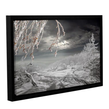 Brushstone Frozen Landscape Gallery Wrapped Floater-Framed Canvas