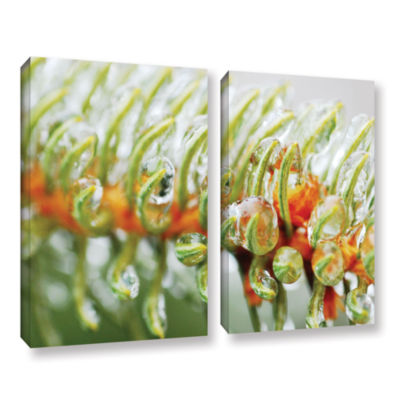 Brushstone Ice On Pine 2-pc. Gallery Wrapped Canvas Wall Art