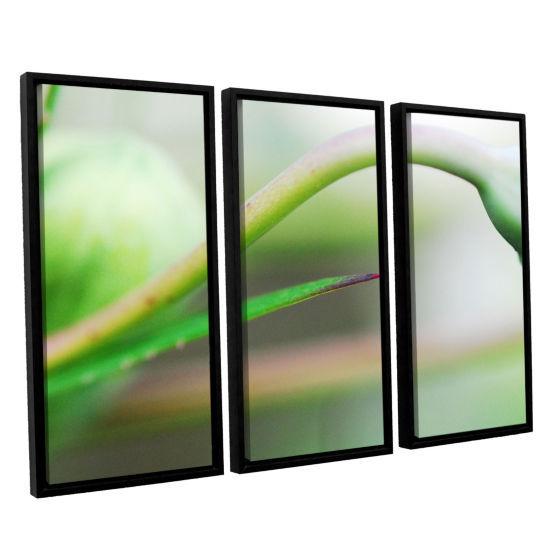 Brushstone Green Gooseneck 3-pc. Floater Framed Canvas Wall Art