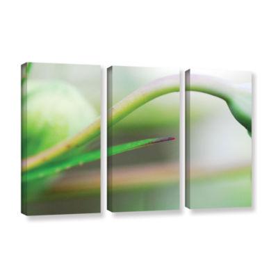 Brushstone Green Gooseneck 3-pc. Gallery Wrapped Canvas Wall Art