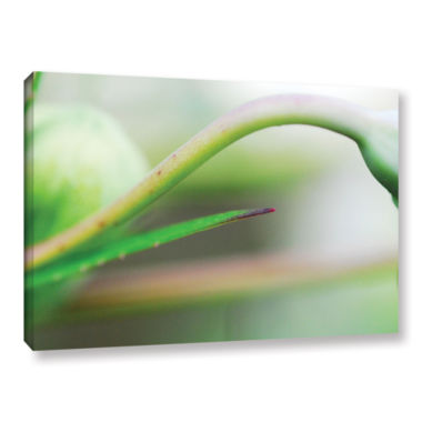 Brushstone Green Gooseneck Gallery Wrapped CanvasWall Art