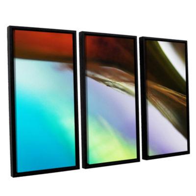 Brushstone Veiled Stem 3-pc. Floater Framed CanvasWall Art