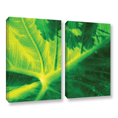 Brushstone Green On Green 2-pc. Gallery Wrapped Canvas Wall Art