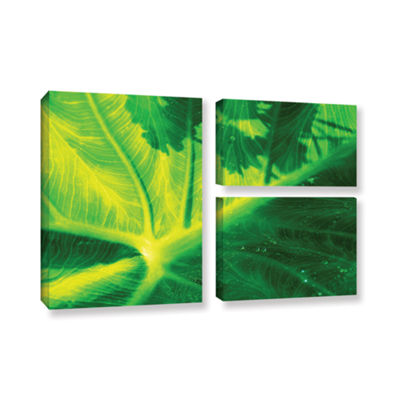 Brushstone Green On Green 3-pc. Flag Gallery Wrapped Canvas Wall Art
