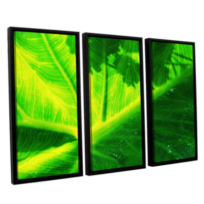 Brushstone Green On Green 3-pc. Floater Framed Canvas Wall Art