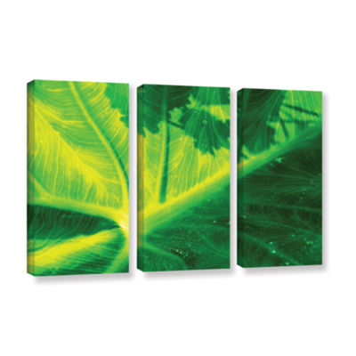 Brushstone Green On Green 3-pc. Gallery Wrapped Canvas Wall Art