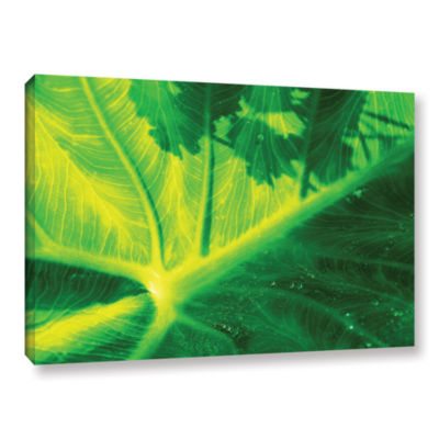 Brushstone Green On Green Gallery Wrapped Canvas Wall Art