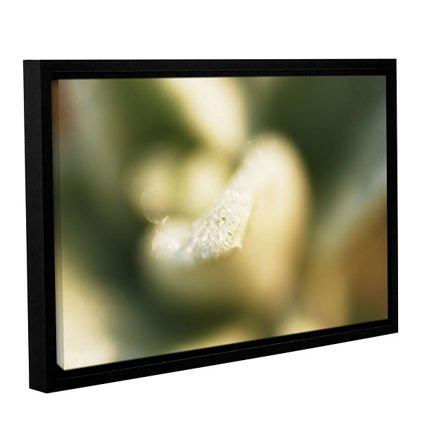 Brushstone Lamb's Ear Petal Gallery Wrapped Floater-Framed Canvas Wall Art