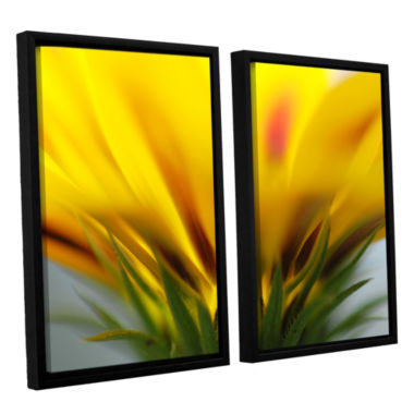 Brushstone Mexican Daisy 2-pc. Floater Framed Canvas Wall Art