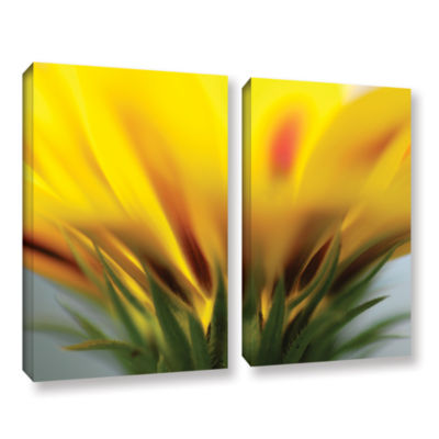 Brushstone Mexican Daisy 2-pc. Gallery Wrapped Canvas Wall Art