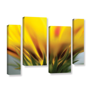Brushstone Mexican Daisy 4-pc. Gallery Wrapped Staggered Canvas Wall Art
