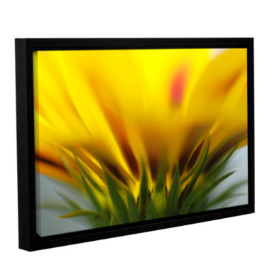 Brushstone Mexican Daisy Gallery Wrapped Floater-Framed Canvas Wall Art