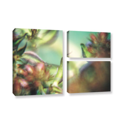 Brushstone Phlox Old Masters 3-pc. Flag Gallery Wrapped Canvas Wall Art