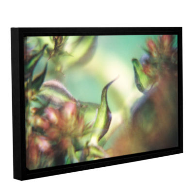 Brushstone Phlox Old Masters Gallery Wrapped Floater-Framed Canvas Wall Art