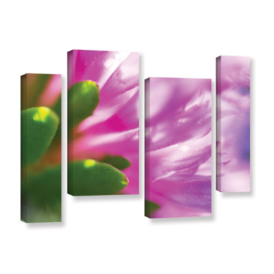 Brushstone Phlox On Edge 4-pc. Gallery Wrapped Staggered Canvas Wall Art