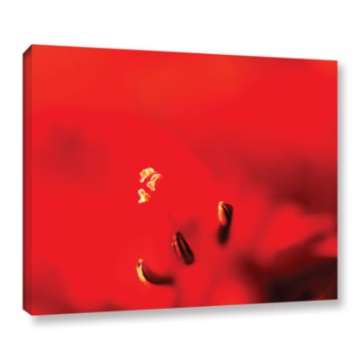 Brushstone Red Centered Stamen Gallery Wrapped Canvas Wall Art