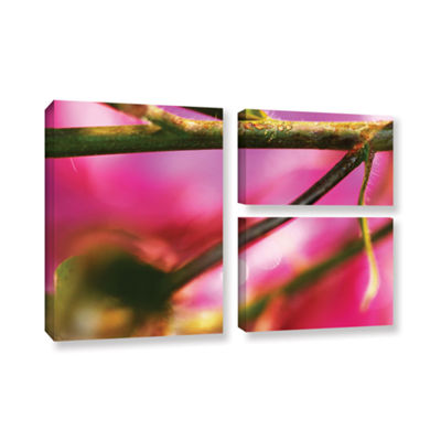 Brushstone Summer Dew 3-pc. Flag Gallery Wrapped Canvas Wall Art