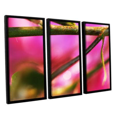 Brushstone Summer Dew 3-pc. Floater Framed CanvasWall Art