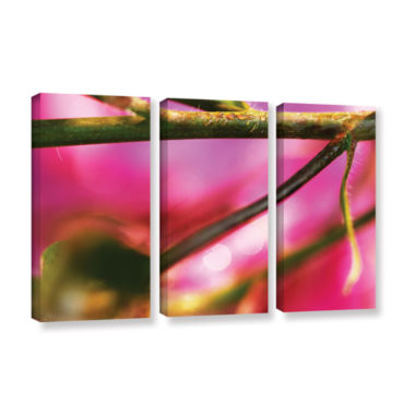 Brushstone Summer Dew 3-pc. Gallery Wrapped CanvasWall Art