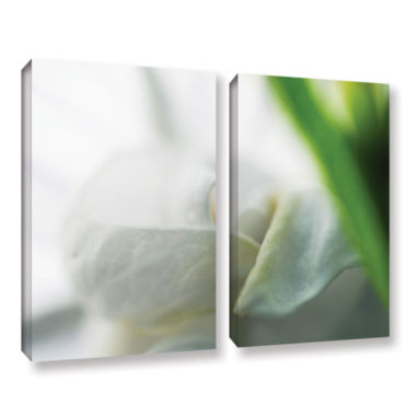 Brushstone White Petal 2-pc. Gallery Wrapped Canvas Wall Art