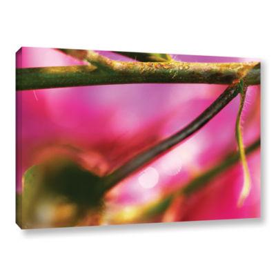 Brushstone Summer Dew Gallery Wrapped Canvas WallArt