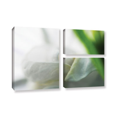 Brushstone White Petal 3-pc. Flag Gallery WrappedCanvas Wall Art