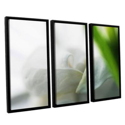 Brushstone White Petal 3-pc. Floater Framed CanvasWall Art